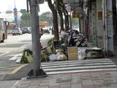 蘇迪勒颱風後景象:DSCN9929.JPG
