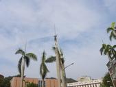 蘇迪勒颱風後景象:DSCN9934.JPG
