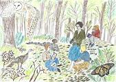 遠方的空靈:瑞秋卡森的森林