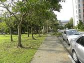 蘇迪勒颱風後景象:DSCN9931.JPG