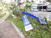蘇迪勒颱風後景象:DSCN9927.JPG