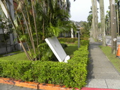 蘇迪勒颱風後景象:DSCN9932.JPG