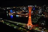 201403日本-關西京板神賞櫻:關西京阪神賞櫻44.jpg