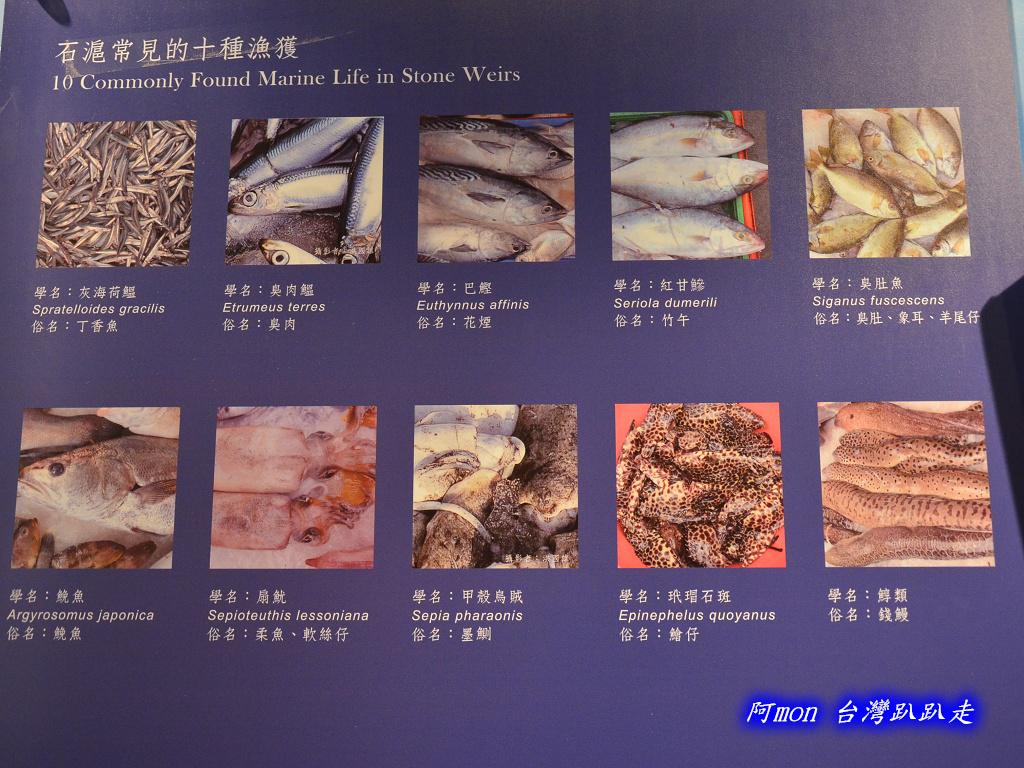 201211澎湖-澎湖生活館:澎湖生活館15.jpg