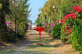 201501台南-椰庭:椰庭03.jpg