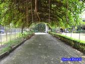 201207嘉義-波妮塔香草花園:波妮塔100.jpg