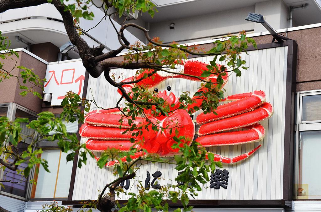 201505日本東京-skybus觀光巴士:觀光巴士58.jpg