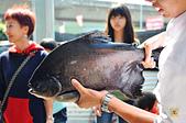 201502彰化-沙里仙鱘龍魚餐廳:沙里仙32.jpg