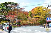 201511日本宮城-松島南部屋:日本宮城松島南部屋09.jpg