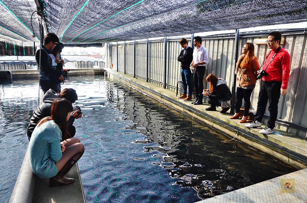 201502彰化-沙里仙鱘龍魚餐廳:沙里仙46.jpg
