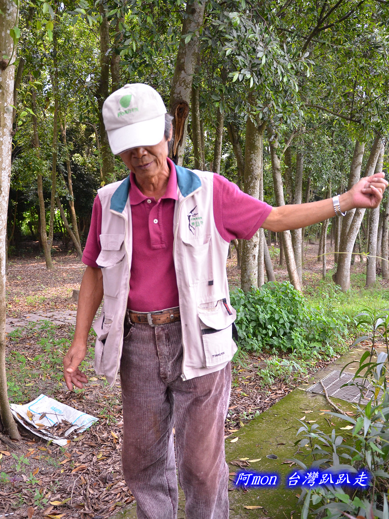 201207嘉義-波妮塔香草花園:波妮塔03.jpg