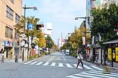 201511日本長野-太陽道飯店:日本長野太陽道飯店62.jpg