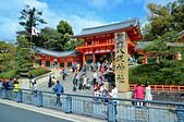 201403日本-關西京板神賞櫻:關西京阪神賞櫻13.jpg