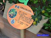 201211嘉義-民雄金桔觀光工廠:民雄金桔觀光工廠06.jpg