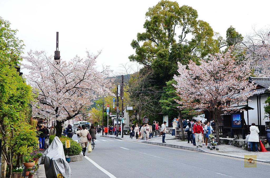 201404日本京都-京都の和菓子老松:京都の和菓子老松14.jpg