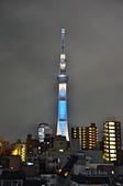201511日本東京-VIAINN淺草飯店:日本東京VIAINN淺草41.jpg
