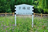 201707中國瀋陽-世博園:瀋陽世博園10.jpg