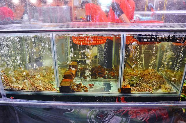 1108979093 l - 【熱血採訪】リ味館~無敵澎湃海鮮火鍋新上市,爆量蟹黃紅蟳超好吃,另還有便宜串燒、壽司,推薦明蝦刺身、烤午魚,食尚玩家介紹,台中居酒屋超推薦