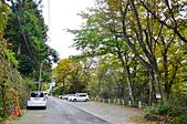 201611日本箱根-強羅綠色廣場溫泉飯店:強羅綠色廣場飯店089.jpg