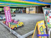 201206嘉義中埔-獨角仙農場:獨角仙13.jpg