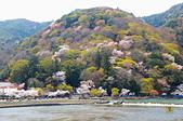 201403日本-關西京板神賞櫻:關西京阪神賞櫻27.jpg