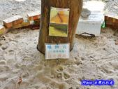 201406台中太平-福石園:福石園04.jpg