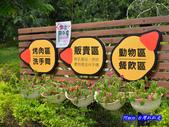 201206嘉義中埔-獨角仙農場:獨角仙01.jpg