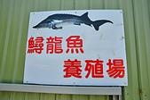 201502彰化-沙里仙鱘龍魚餐廳:沙里仙05.jpg