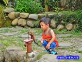 201406台中太平-福石園:福石園19.jpg