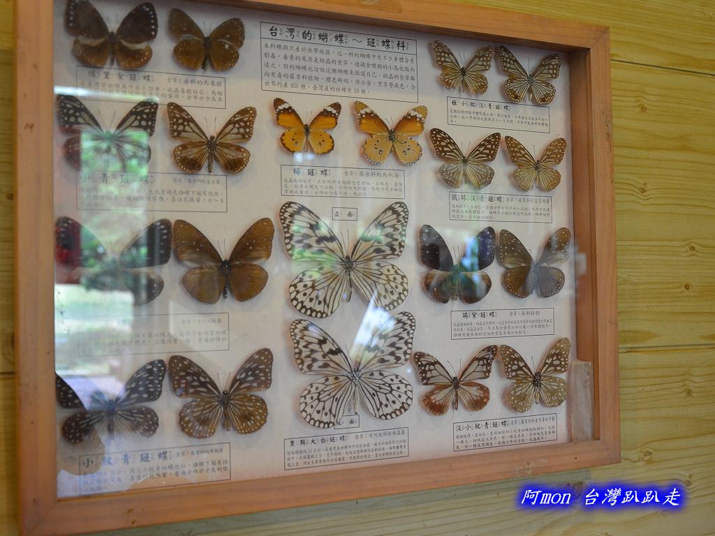 201207嘉義-波妮塔香草花園:波妮塔29.jpg
