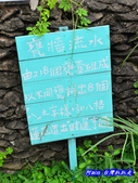 201406台中太平-福石園:福石園43.jpg