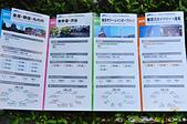 201505日本東京-skybus觀光巴士:觀光巴士20.jpg
