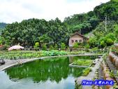 201406台中太平-福石園:福石園09.jpg