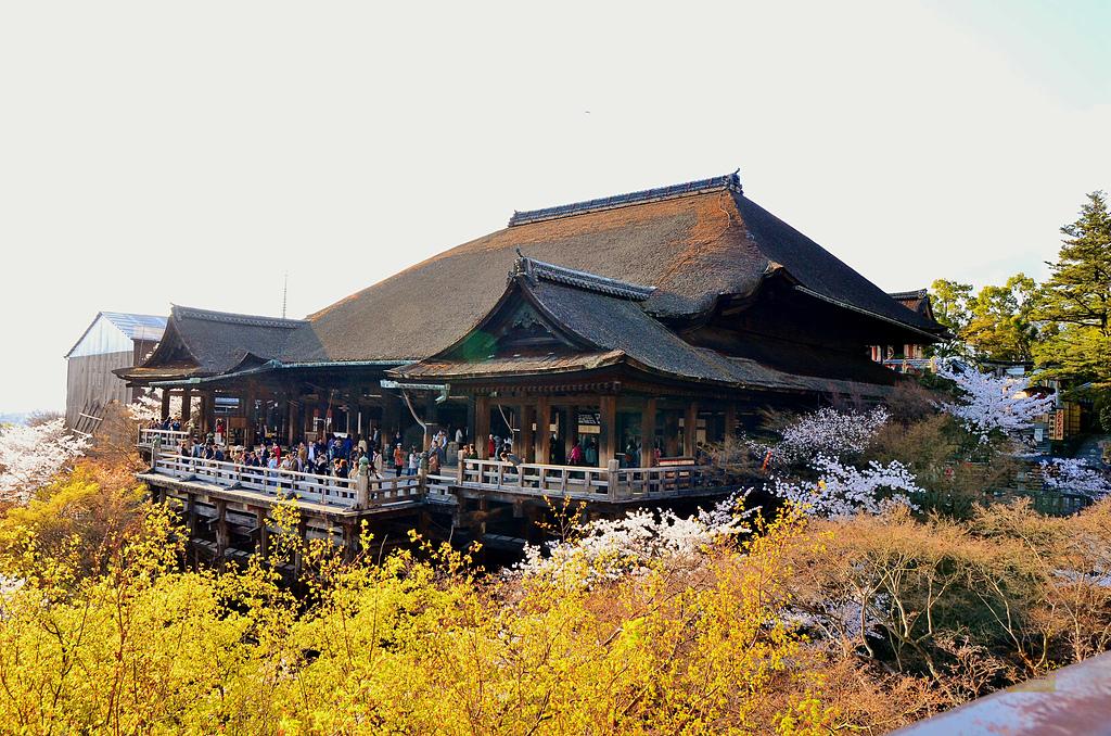 201403日本-關西京板神賞櫻:關西京阪神賞櫻14.jpg