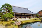 201403日本-關西京板神賞櫻:關西京阪神賞櫻29.jpg