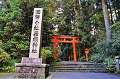 201612日本箱根-箱根2日券:箱根2日券37.jpg