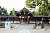 201403日本-關西京板神賞櫻:關西京阪神賞櫻19.jpg