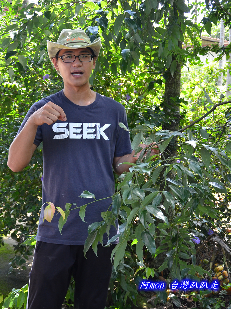 201206嘉義中埔-豐山生態園區:豐山生態園區30.jpg