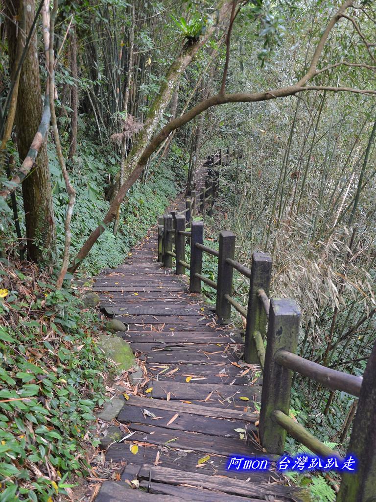 201211苗栗-蓬萊溪生態園區+護魚步道:蓬萊溪41.jpg