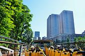 201505日本東京-skybus觀光巴士:觀光巴士31.jpg