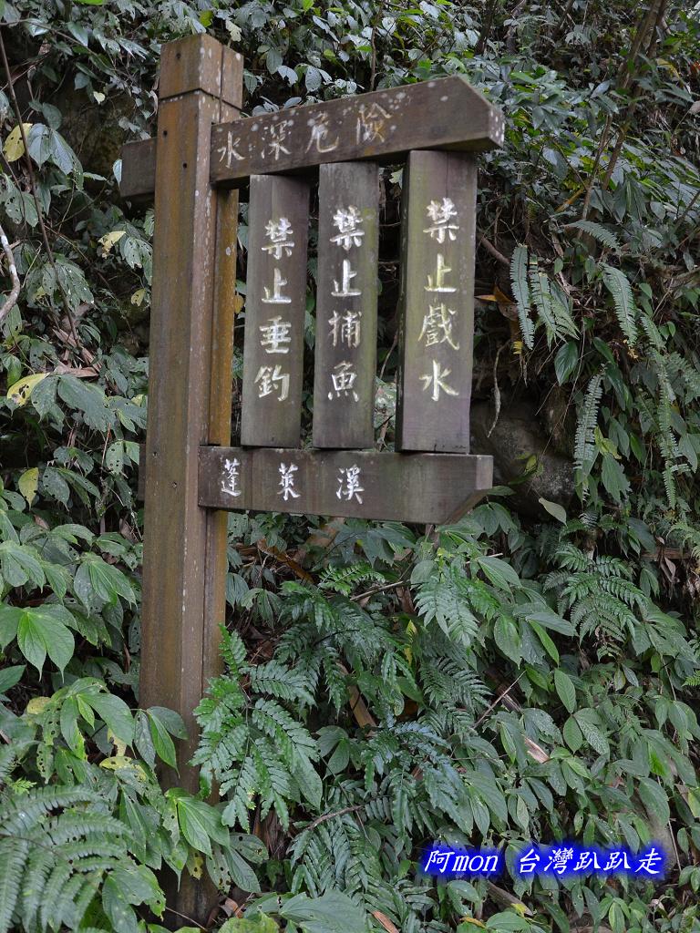 201211苗栗-蓬萊溪生態園區+護魚步道:蓬萊溪44.jpg