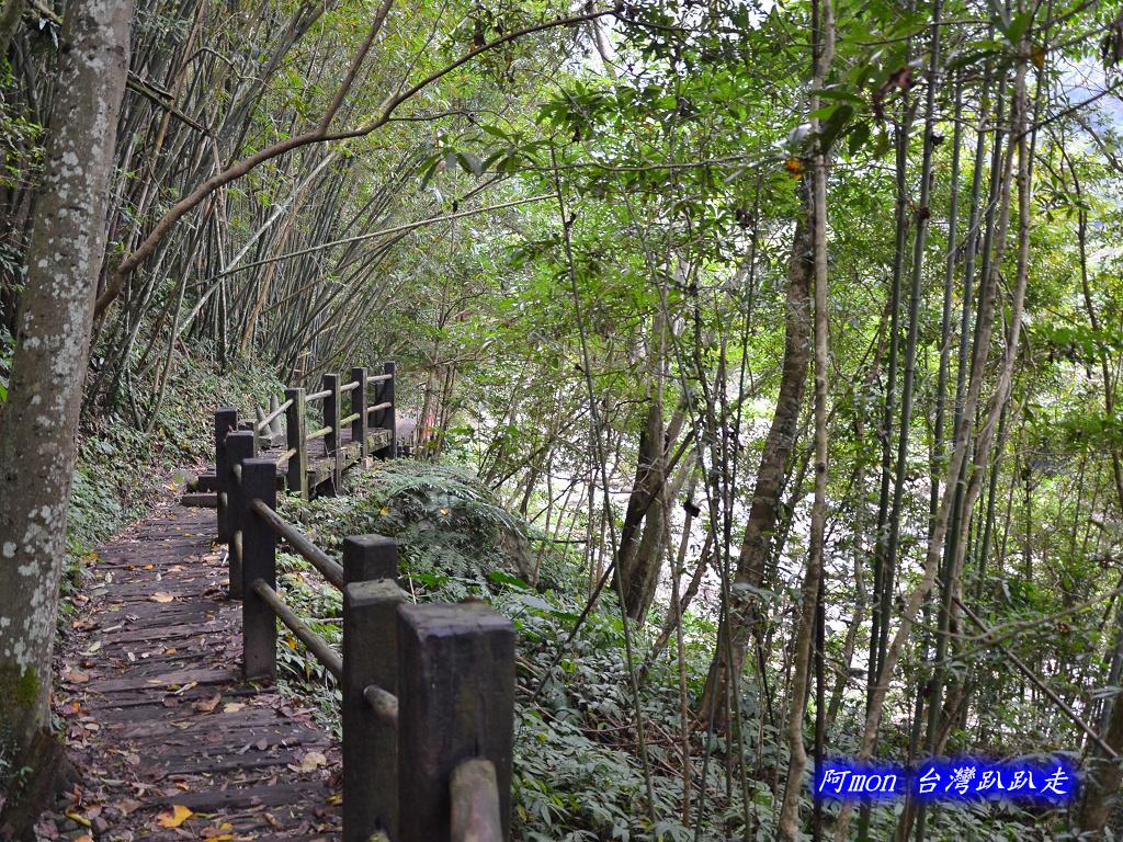 201211苗栗-蓬萊溪生態園區+護魚步道:蓬萊溪09.jpg
