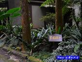 201310南投-溪頭明山森林會館:明山森林會館29.jpg