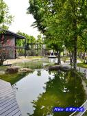 201403宜蘭-水岸楓林:水岸楓林108.jpg