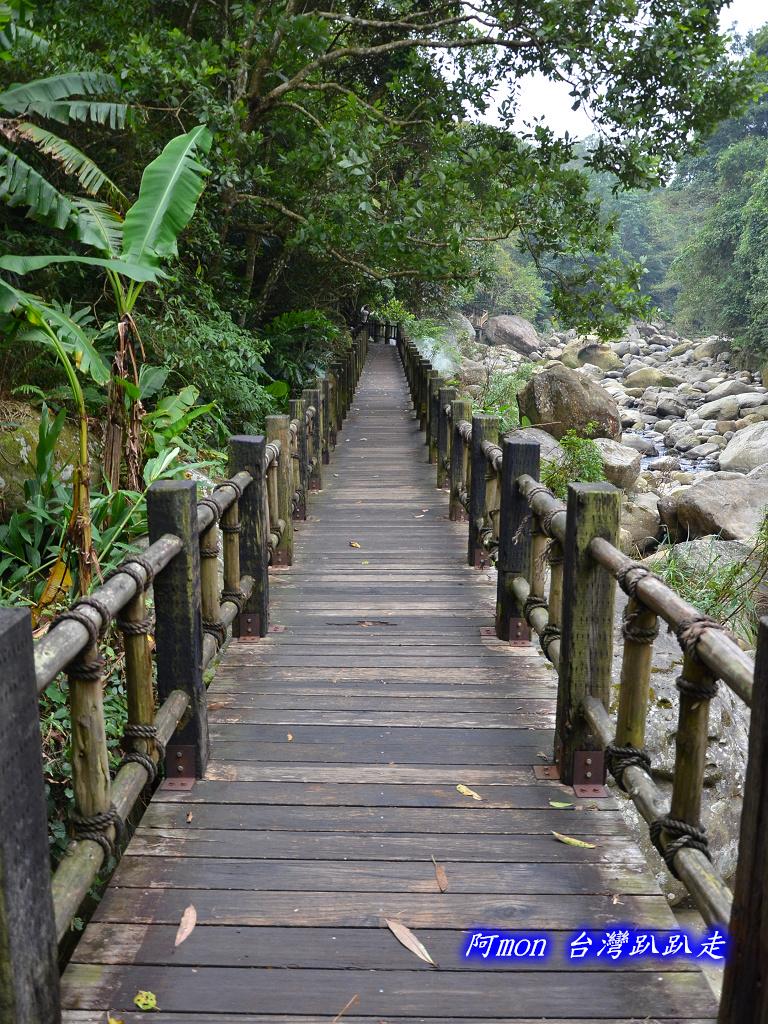 201211苗栗-蓬萊溪生態園區+護魚步道:蓬萊溪46.jpg