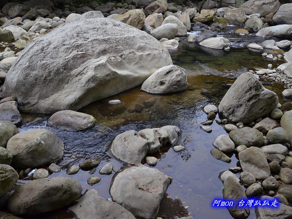 201211苗栗-蓬萊溪生態園區+護魚步道:蓬萊溪18.jpg