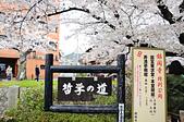 201403日本-關西京板神賞櫻:關西京阪神賞櫻17.jpg