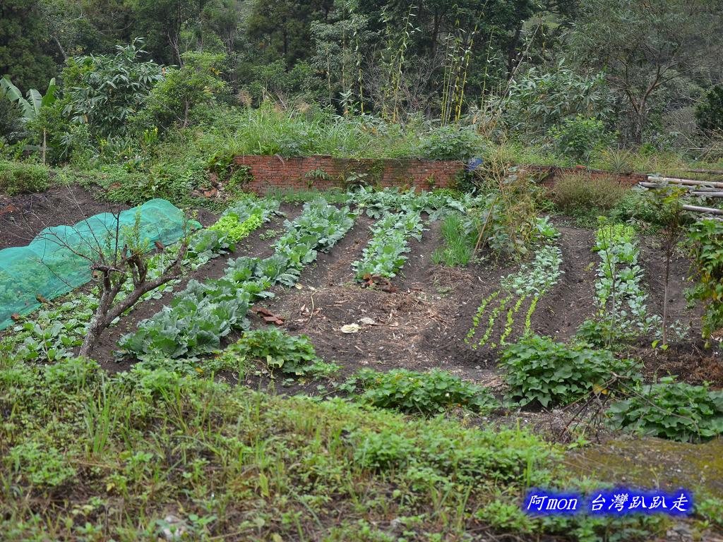 201211苗栗-蓬萊溪生態園區+護魚步道:蓬萊溪36.jpg