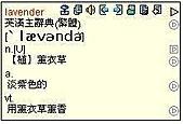 日記插圖-1:lavender.JPG