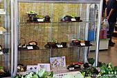 H21.九州熊本阿蘇  草千里売店食處*:IMG_9899.jpg